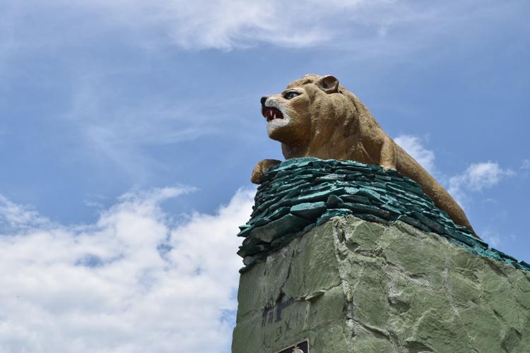 Monumento el León - Girardot