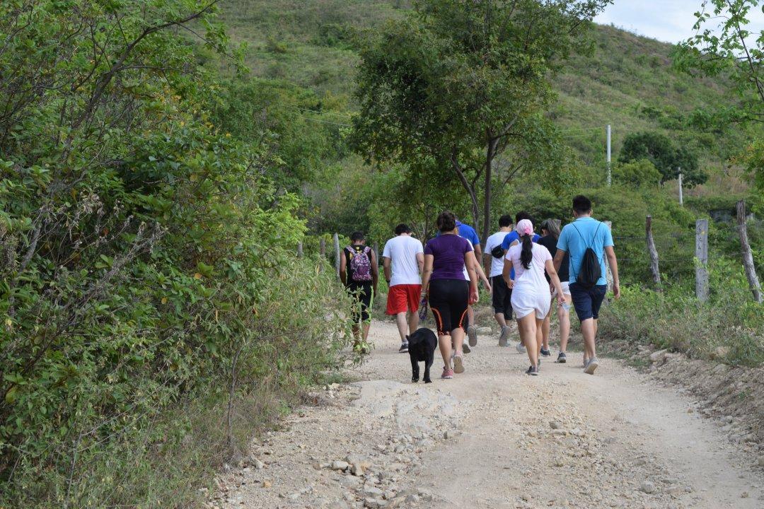 Paseo al Arbolito