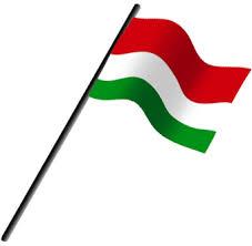 Bandera de Girardot